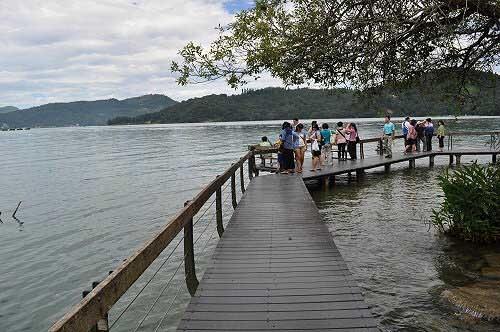水岸高架棧道,可以眺覽日月潭湖景。 (圖片提供:tony)