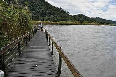 大竹湖步道水鳥保護區。(圖片提供:tony)