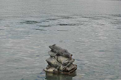水蛙雕塑。(圖片提供:tony)