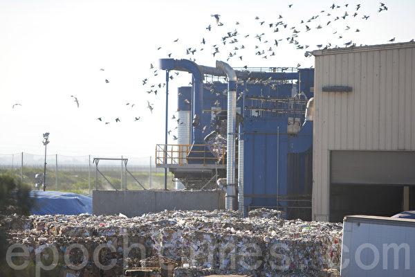 紐比垃圾場的回收處理廠也是臭味源頭之一。(馬有志/大紀元)