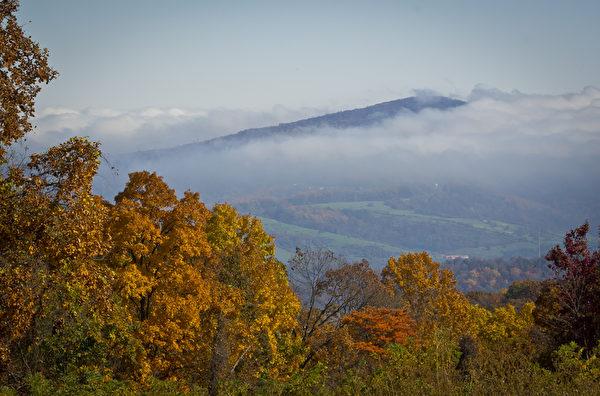 图为维吉尼亚州(Virginia)的雪兰多国家公园(Shenandoah National Park)。(MLADEN ANTONOV/AFP/Getty Images)