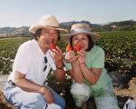 金麦面包店创办人李文雄和太太。(李文雄提供)