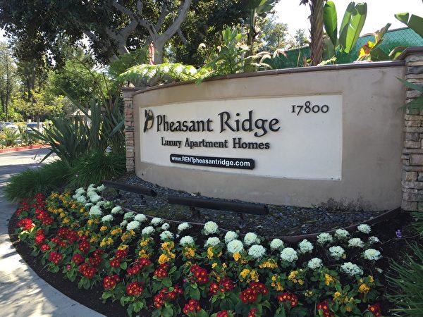 被搜查的罗兰岗Pheasant Ridge豪华公寓。(郑浩/大纪元)