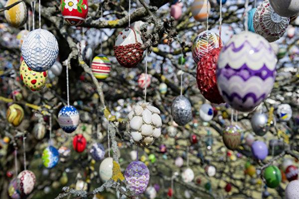 2015年3月25日,德国萨尔费尔德小镇,退休夫妇Kraft与Christa,用1万枚复活节彩蛋装饰苹果树。(Jens Schlueter/Getty Images)