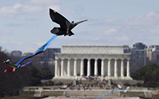 华府樱花节固定举办的活动之一─风筝祭,3月28日在林肯纪念堂登场。(ANDREW CABALLERO-REYNOLDS/AFP)
