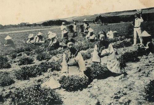 前人遊記.江亢虎-1935年出版的《台遊追記》(4)