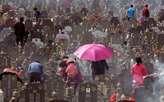 """墓地价是房价14倍 中国特色""""死不起""""的背后"""