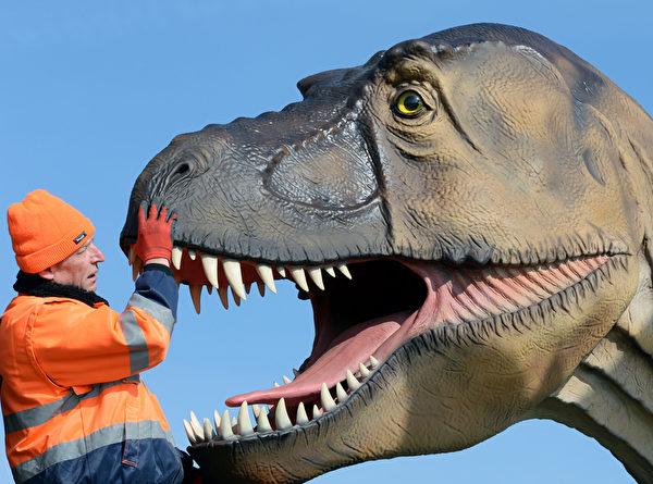 """""""谁如此大胆?敢从恐龙口中拔牙!?""""----3月23日,在德国东部武斯特尔马尔克,恐龙的雕塑展展出的作品。(RALF HIRSCHBERGER/AFP)"""