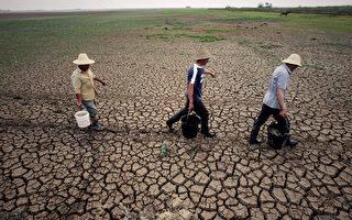 2015年4月14日,中共农业部称,大陆农业面源污染仍在加剧。图为2011年5月9日,干旱中的湖北,农民们正在提水浇地。 (Photo by ChinaFotoPress/Getty Images)