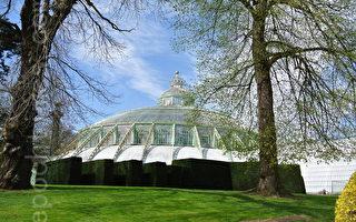 造型大气典雅的皇室专用玻璃花房始建于1874年,建筑面积约为1万4000平方米,是欧洲最大的皇家花园。(萧依然/大纪元)