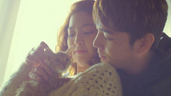 朴世荣、强仁跟猫咪亲昵的互动情形。(采昌国际多媒体提供)