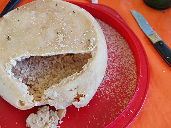 卡苏马苏乳酪(Casu Marzu)。(Fotolia)