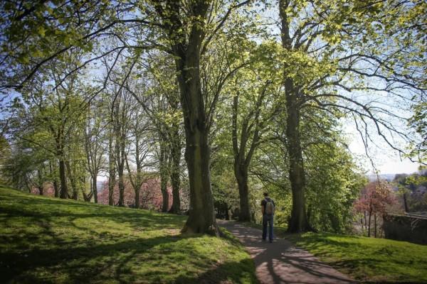 2015年4月22日,在英国布兰登公园散步。(Matt Cardy/Getty Images)