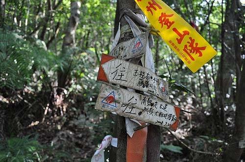 遇岔路(左往九芎坑山)。取直行,续行南势坑古道。路旁有一座石棚土地公。 (图片提供:tony)