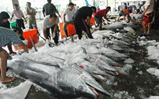 鱼肉鲜美营养 怎样吃更安全