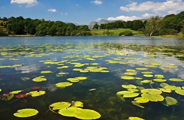 湖(fotolia)