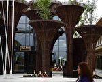 2015米兰世界博览会越南馆(AFP)