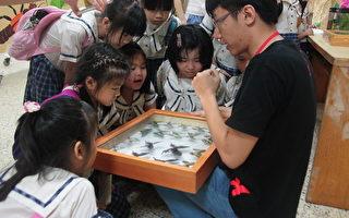 兴大昆虫展   小学生:白蚁世界好新奇