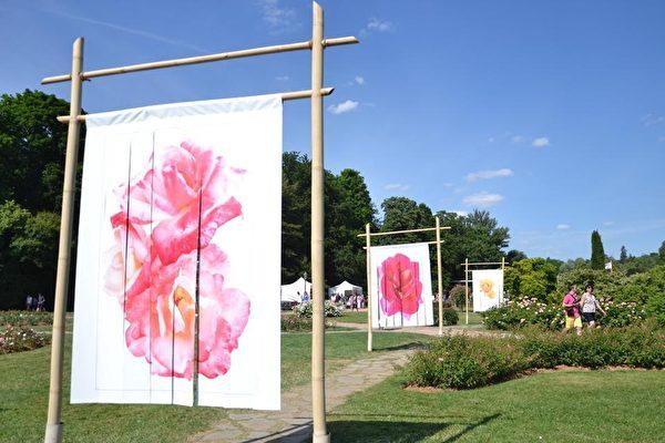 第17届玫瑰世界大会(17ème Congrés Mondial de Rose)在里昂金头公园(le parc de la Tête d'Or)召开。(石一/大纪元)