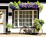 英国剑桥、民居、自行车、鲜花(Depositphotos)