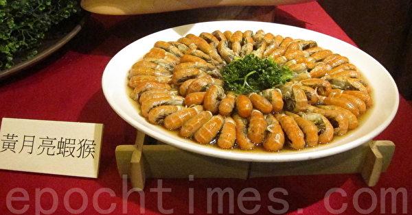 黄月亮虾猴。(钟元/大纪元)