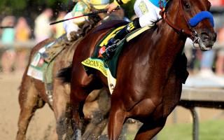 """名为美国法老(American Pharoah)的良驹能否拿下""""三冠王""""成今天赛马的焦点。(Andy Lyons/Getty Images)"""