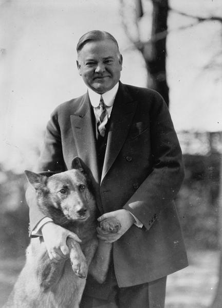 胡佛總統和愛犬在一起。(維基百科公共領域)