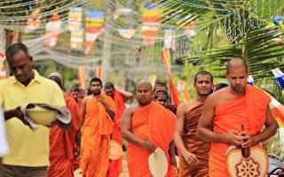 在某些研究案例中,有些儿童记得自己前世是僧侣。图为斯里兰卡的僧侣。(Buddhika Weerasinghe/Getty Images)
