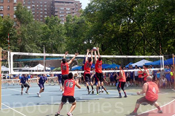 美东华人排球赛11日开打