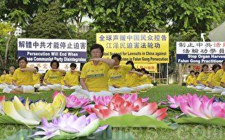 7月14日傍晚,新加坡法轮功学员在芳林公园举办纪念7•20反迫害16周年的活动。(苏每善/大纪元)