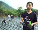 美丽心台湾:餐盘中的有机生态