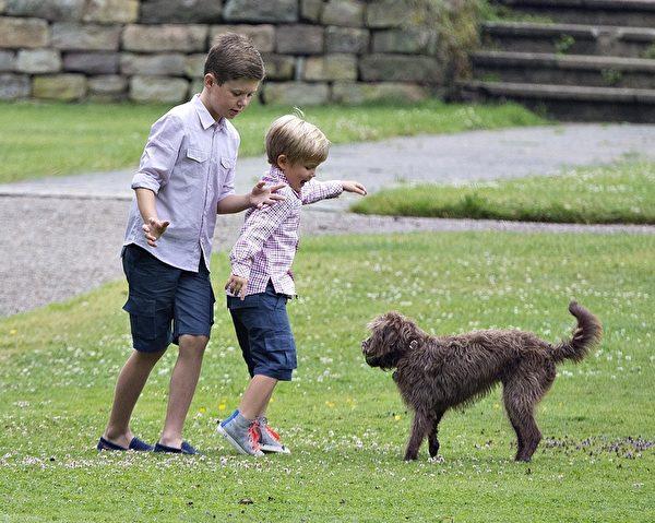 丹麦王子克里斯蒂安(左)和弟弟文森特在玩耍。(HENNING BAGGER/AFP/Getty Images)
