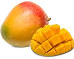 芒果提前收穫 受歡迎品種月底陸續上市