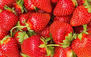 農藥殘留多的12種蔬果 草莓「最髒」