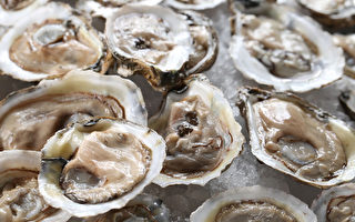 生食海鮮恐染A肝 醫籲打疫苗最有效