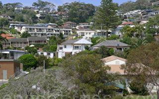 悉尼買房最「熱」區 行動要快喲!