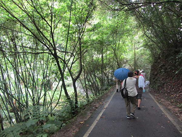 六寮古道是百年前新竹县北埔、峨眉到南庄的老路。(林宝云/大纪元)