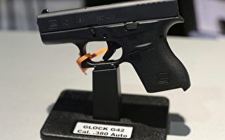加拿大槍枝標記法已經被第7次推遲實施。(加通社)