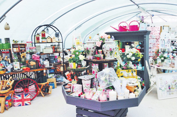 Medicine Park 里别致的小商店。( 摄影|大纪元)