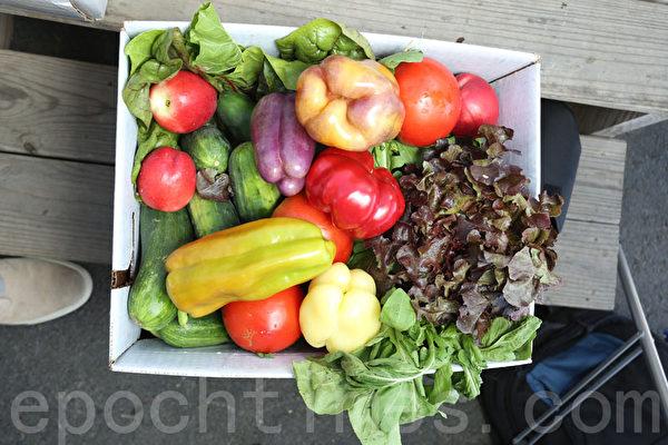 CSA分享式農作物銷售的每周菜籃。(張學慧/大紀元)