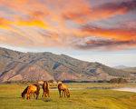 """蒙古人的血性,像是""""长生天""""选中的豪杰,在历史的天空留下浓厚的色彩。元朝一代开国明君,与两位旷世奇人和神童,为后世树立君臣之谊的典范。(fotolia)"""