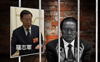 港媒披露,江蘇省委書記羅志軍在中共北戴河會議期間,向當局提出辭呈,這是其第三次提出辭職。據報,羅志軍深涉周永康案。(大紀元合成圖)