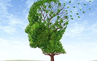 不只是老年人才会记忆力减退,专家介绍,有4种疾病也可以损伤记忆力。(大纪元工作室)