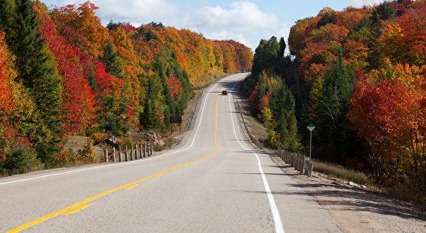 """加拿大最热门的赏枫路线""""枫叶大道""""全长约八百公里,沿路枫红似火,美不胜收。(Fotolia)"""