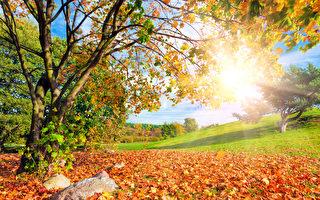 秋意渐浓 美国五个秋景迷人的城市