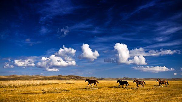 每当狂风暴雨过后,山更显出它的巍峨,草原会更显出它的辽阔。这同样也像是唆鲁禾帖尼的生命底色。(Fotolia)