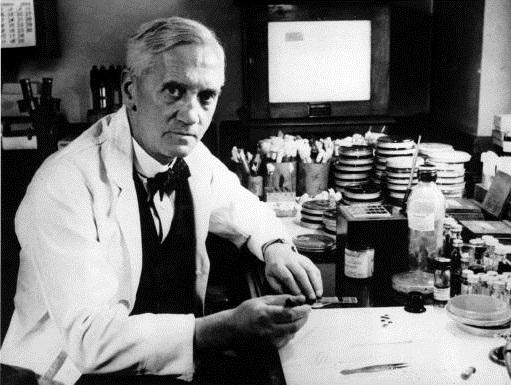 苏格兰细菌学家、青霉素发现者亚历山大‧弗莱明爵士。(维基百科公共领域)