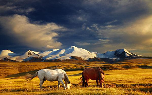 """蒙古人的血性,像是""""长生天""""(蒙古民族以""""苍天""""为永恒最高神,故谓""""长生天"""")选中的豪杰,在历史的天空留下浓厚的色彩。(fotolia)"""