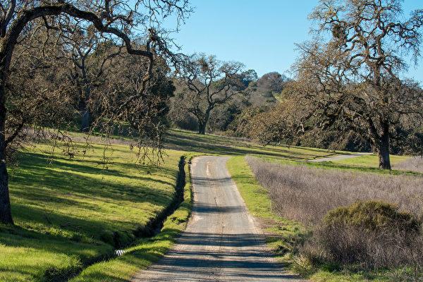 伍德賽(Woodside)92英畝的地產,開價3,500萬美元,是一塊處女地。(Dana Cappiello提供)