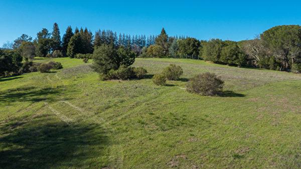 伍德賽(Woodside)92英畝的地產,開價3,500萬美元,土地上保有大量的生態環境。(Dana Cappiello提供)